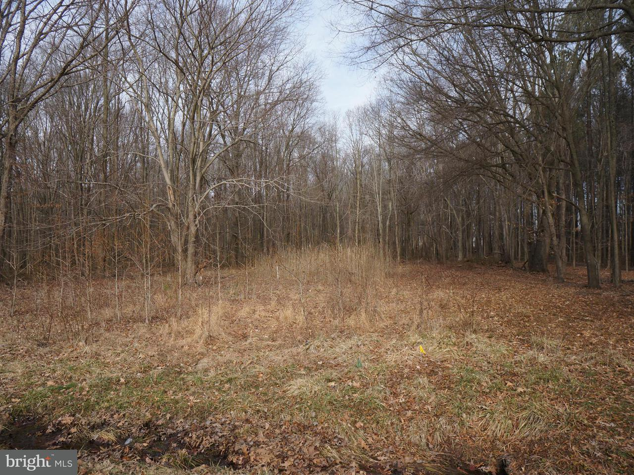 Additional photo for property listing at 9048 Georgetown Rd  Chestertown, Maryland 21620 United States