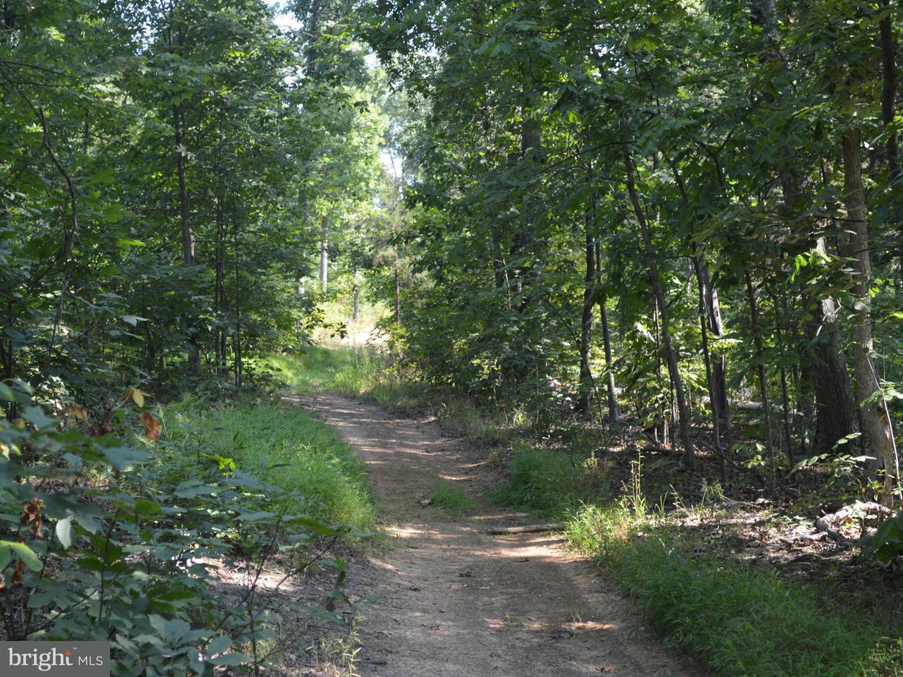 Terrain pour l Vente à ESTEPPE Road ESTEPPE Road Front Royal, Virginia 22630 États-Unis