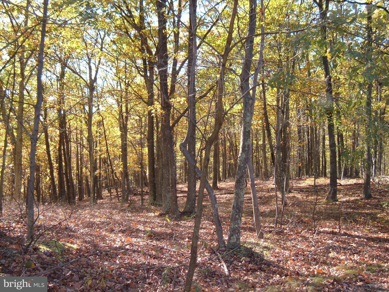 Terrain pour l Vente à 17503 Mcmullen Hwy 17503 Mcmullen Hwy Rawlings, Maryland 21557 États-Unis