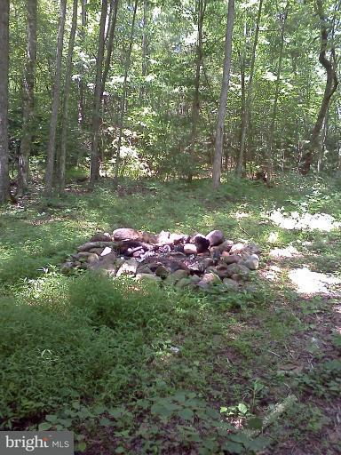 Additional photo for property listing at Naked Creek Rd  Luray, Virginia 22835 United States