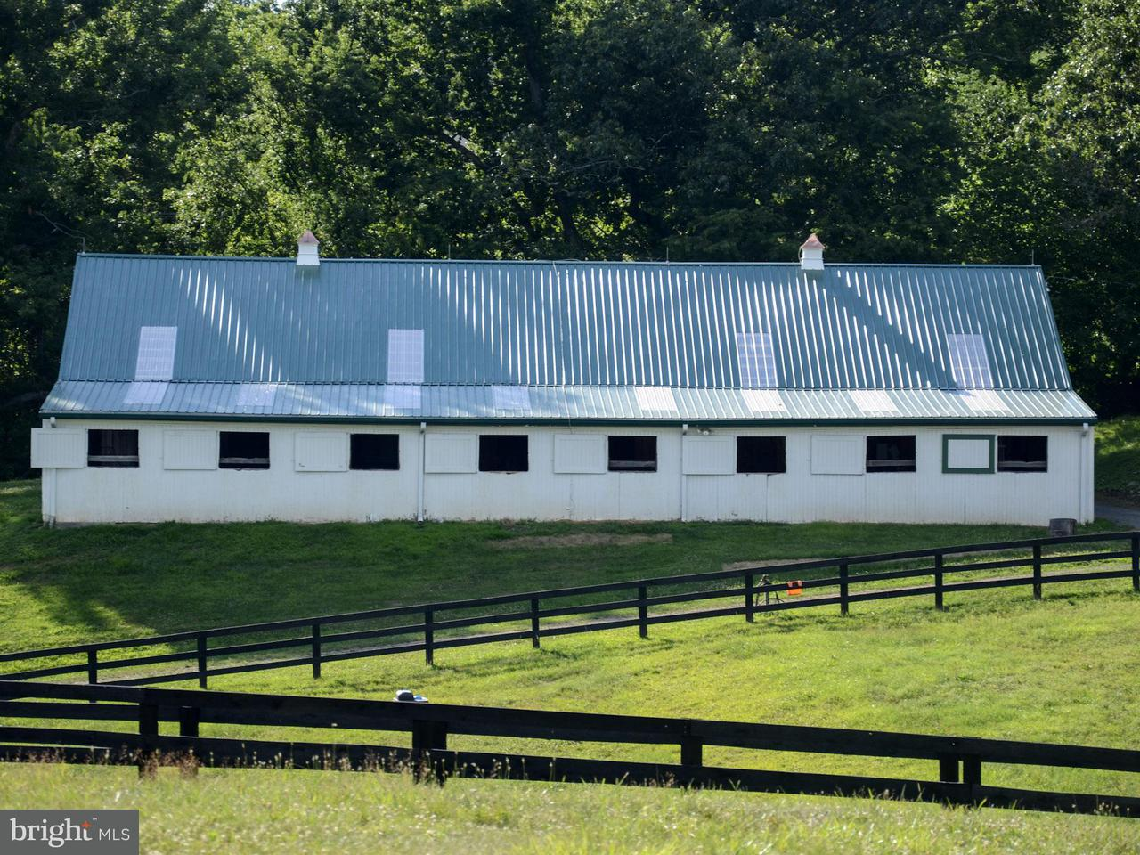 Additional photo for property listing at 35485 MILLVILLE Road 35485 MILLVILLE Road Middleburg, Virginia 20117 United States
