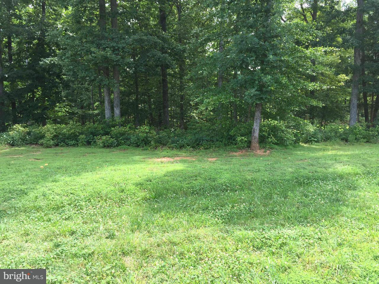 Additional photo for property listing at 11305 Hidden Cv  Spotsylvania, Virginia 22551 United States