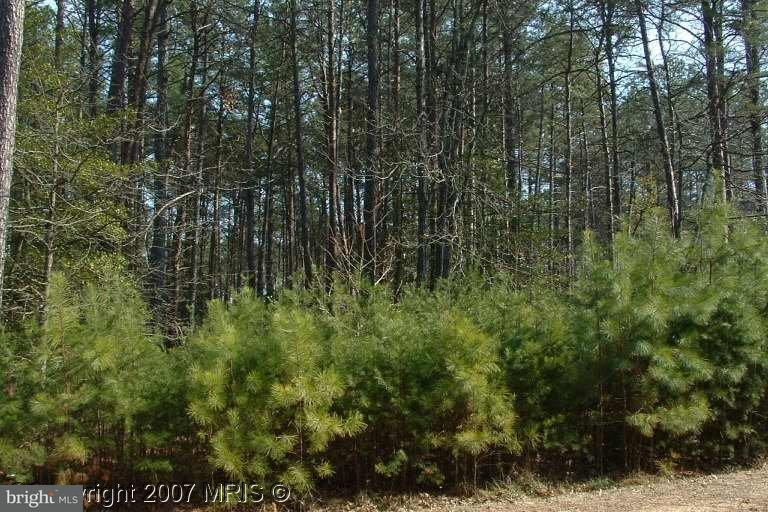 Land for Sale at 11165 Lord Baltimore Dr Swan Point, Maryland 20645 United States