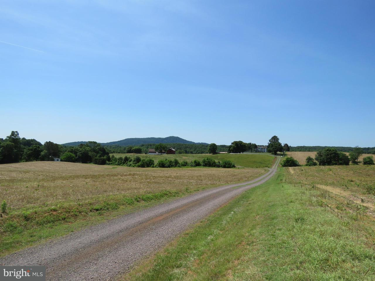 Terrain pour l Vente à 1571 James City Road 1571 James City Road Leon, Virginia 22725 États-Unis