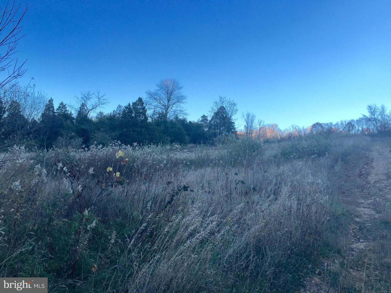 Additional photo for property listing at BLAIRS VALLEY Road BLAIRS VALLEY Road Mercersburg, 펜실바니아 17236 미국