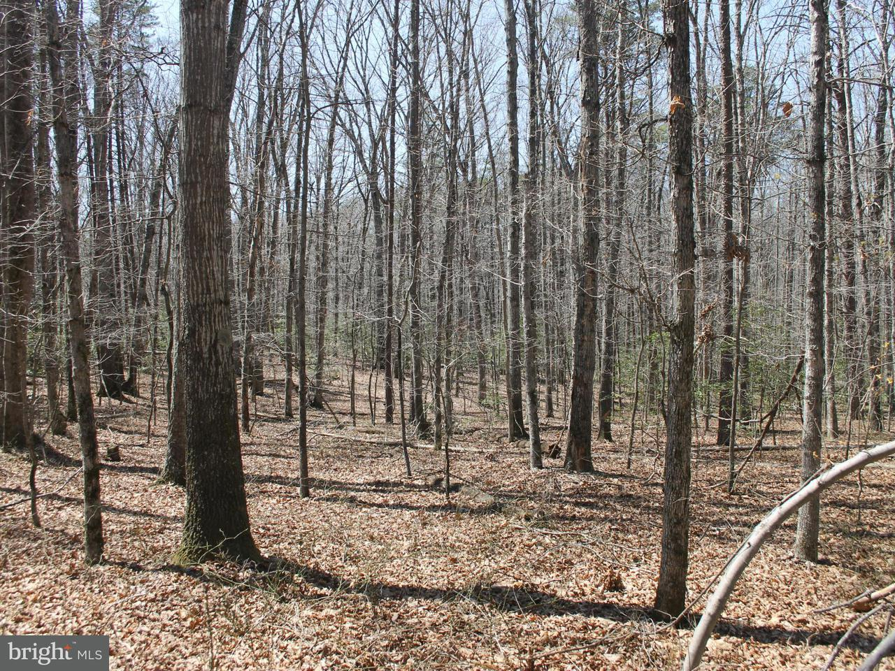 Additional photo for property listing at Union Church Rd  Sumerduck, Virginia 22742 United States