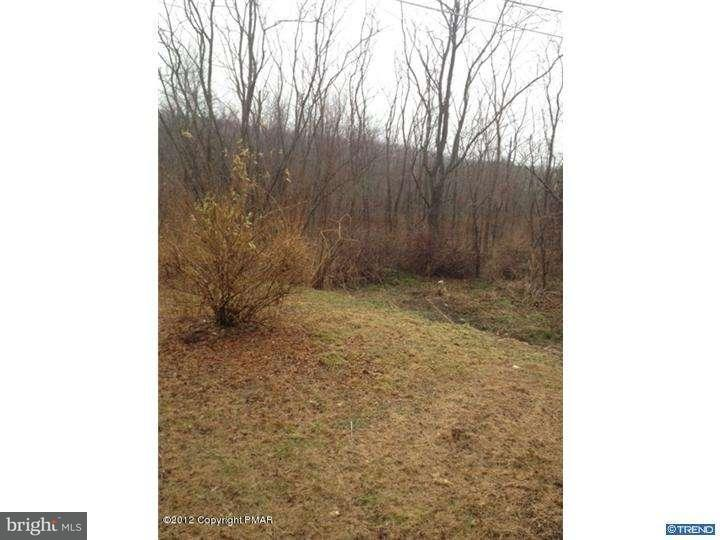 Additional photo for property listing at 420 EVERGREEN HOLLOW ROAD Road  Effort, Pennsylvania 18330 United States