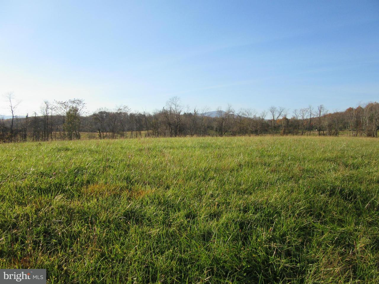 Additional photo for property listing at 13583 LEE HWY 13583 LEE HWY Washington, Virginia 22747 Estados Unidos
