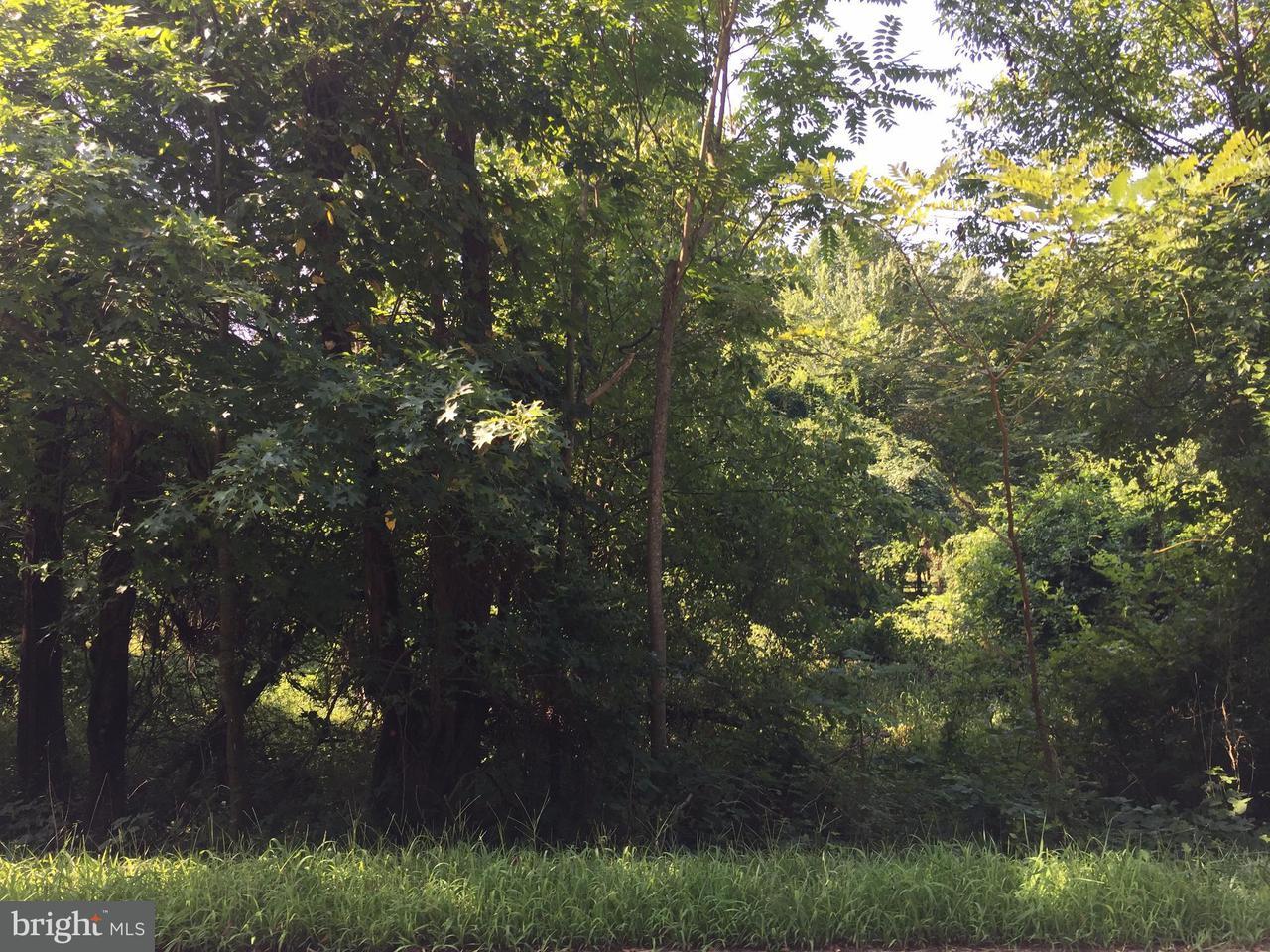 Land for Sale at 748 KENTLAND Drive 748 KENTLAND Drive Great Falls, Virginia 22066 United States