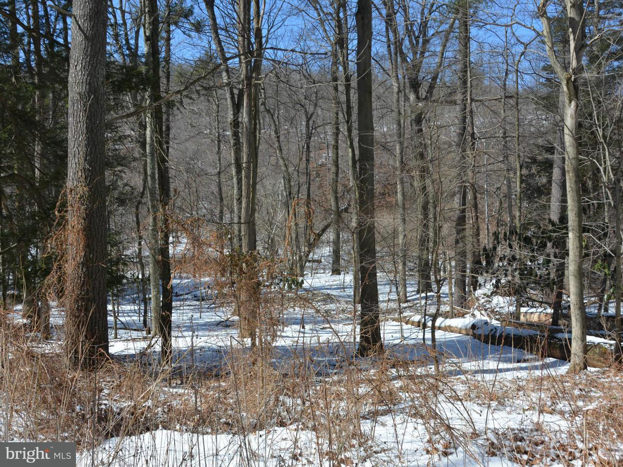 Land for Sale at Cove Street Everett, Pennsylvania 15537 United States
