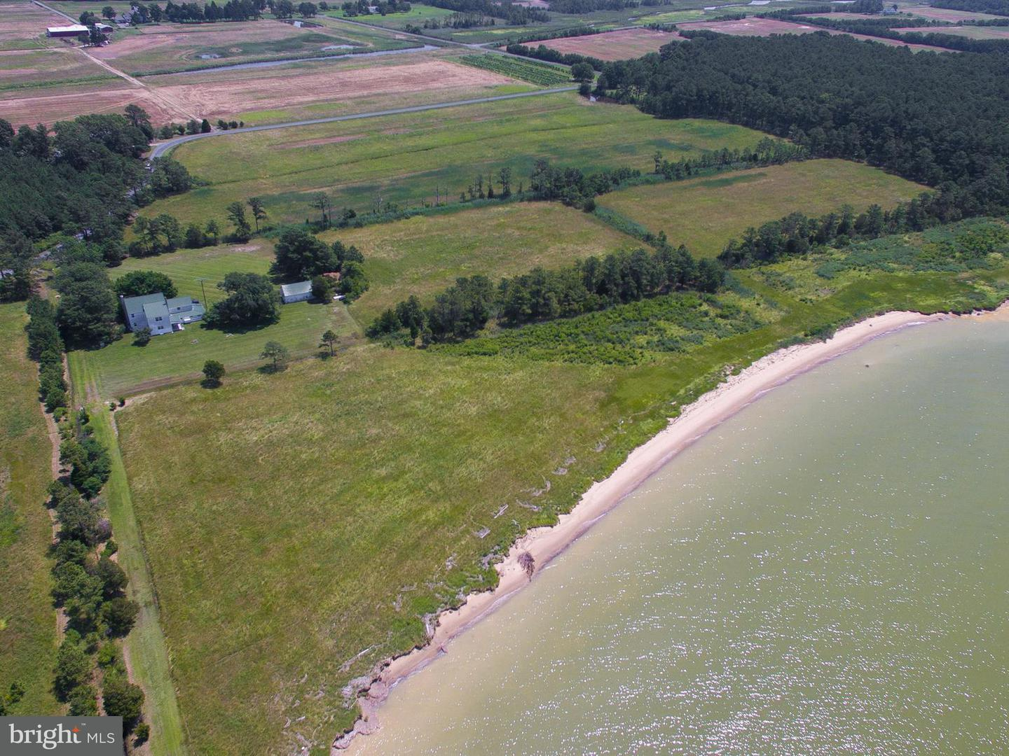 Farm for Sale at 4228 Bay Shore Rd Taylors Island, Maryland 21669 United States