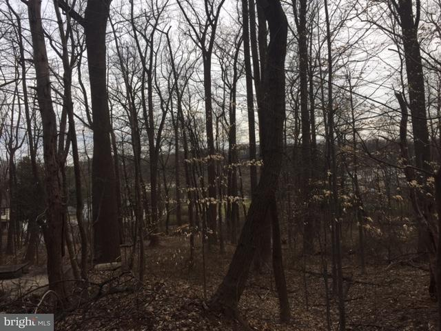 Land for Sale at Long Green Pike Glen Arm, Maryland 21057 United States