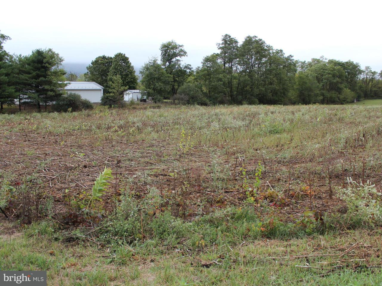 Land for Sale at Swailes Rd Willow Hill, Pennsylvania 17271 United States