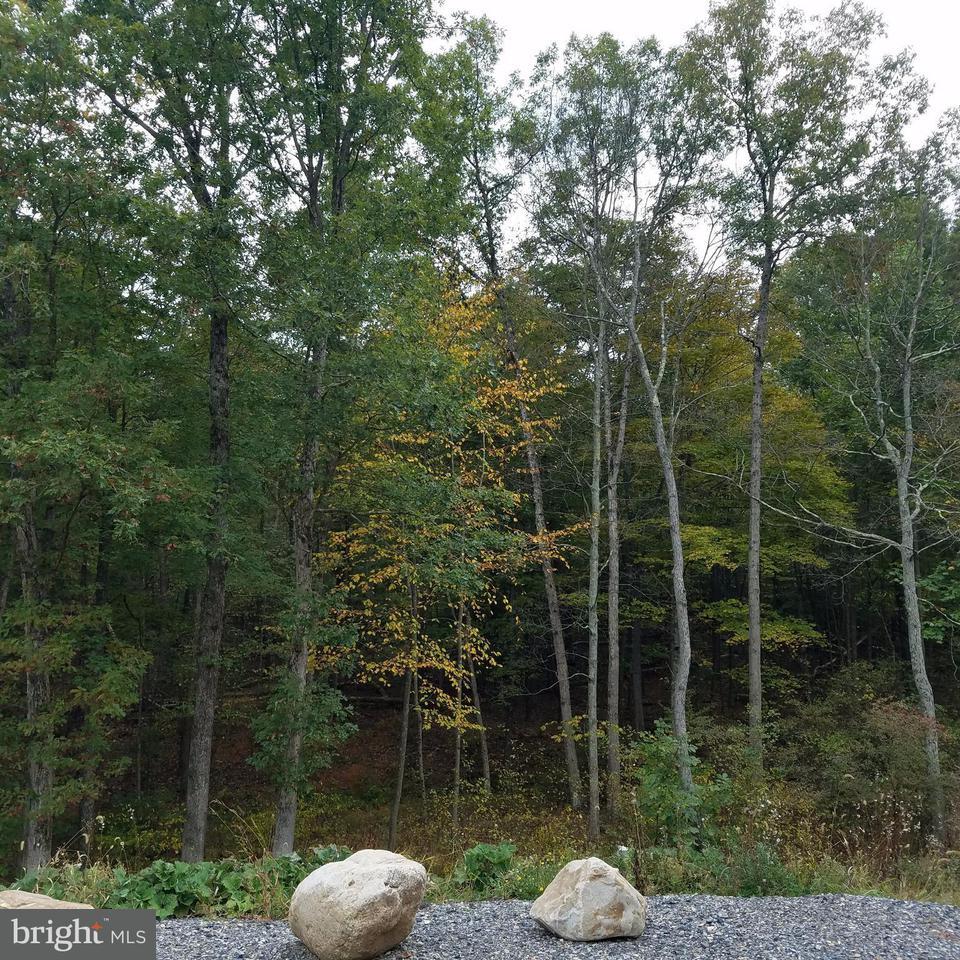 Land for Sale at 13811 Rolling Oak Dr Ellerslie, Maryland 21529 United States