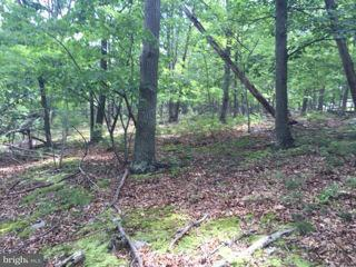 Additional photo for property listing at Rt 220 /cCt oOf rRad  Keyser, West Virginia 26726 United States