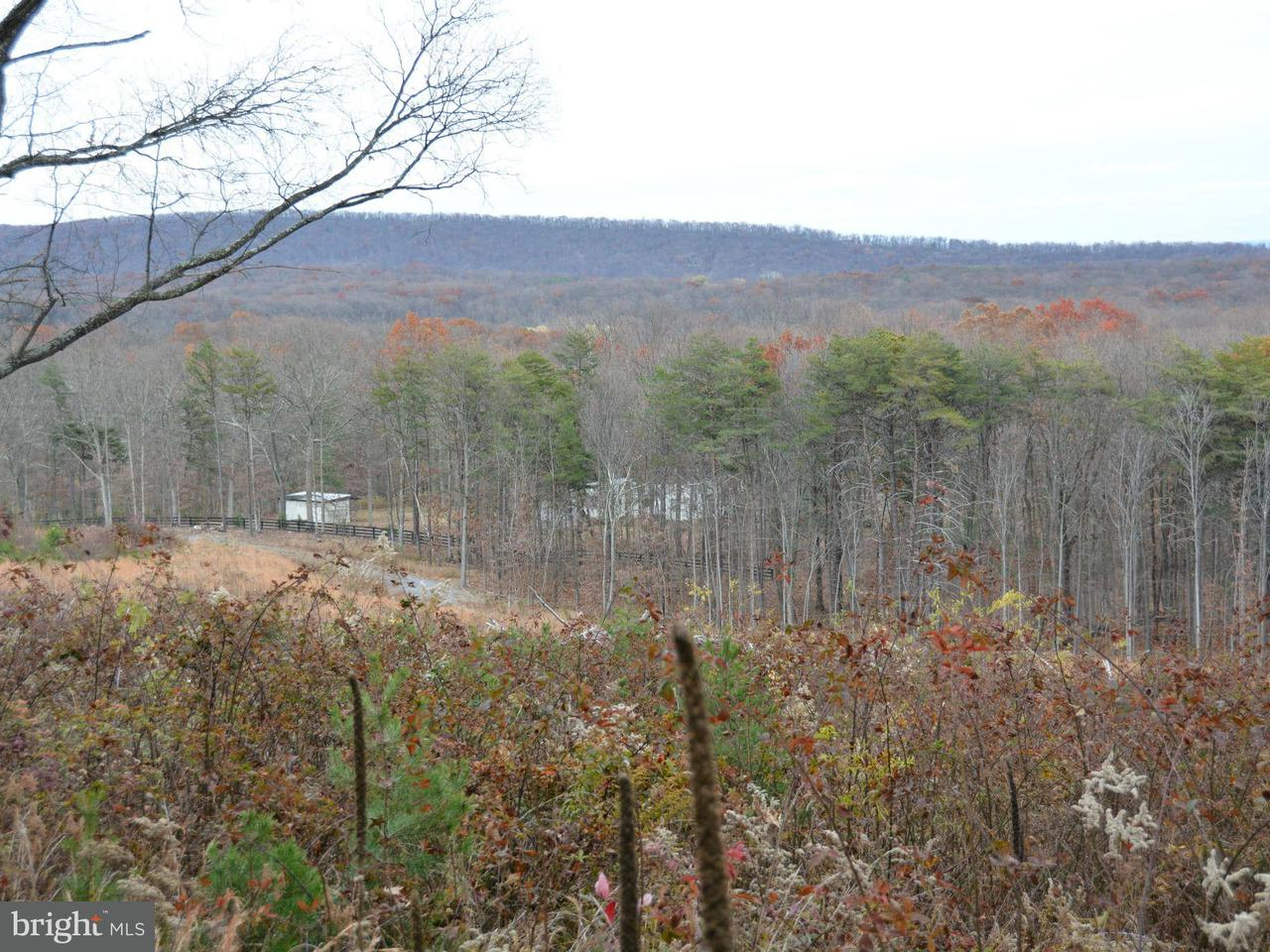Land for Sale at 244 Gough Rd Winchester, Virginia 22602 United States