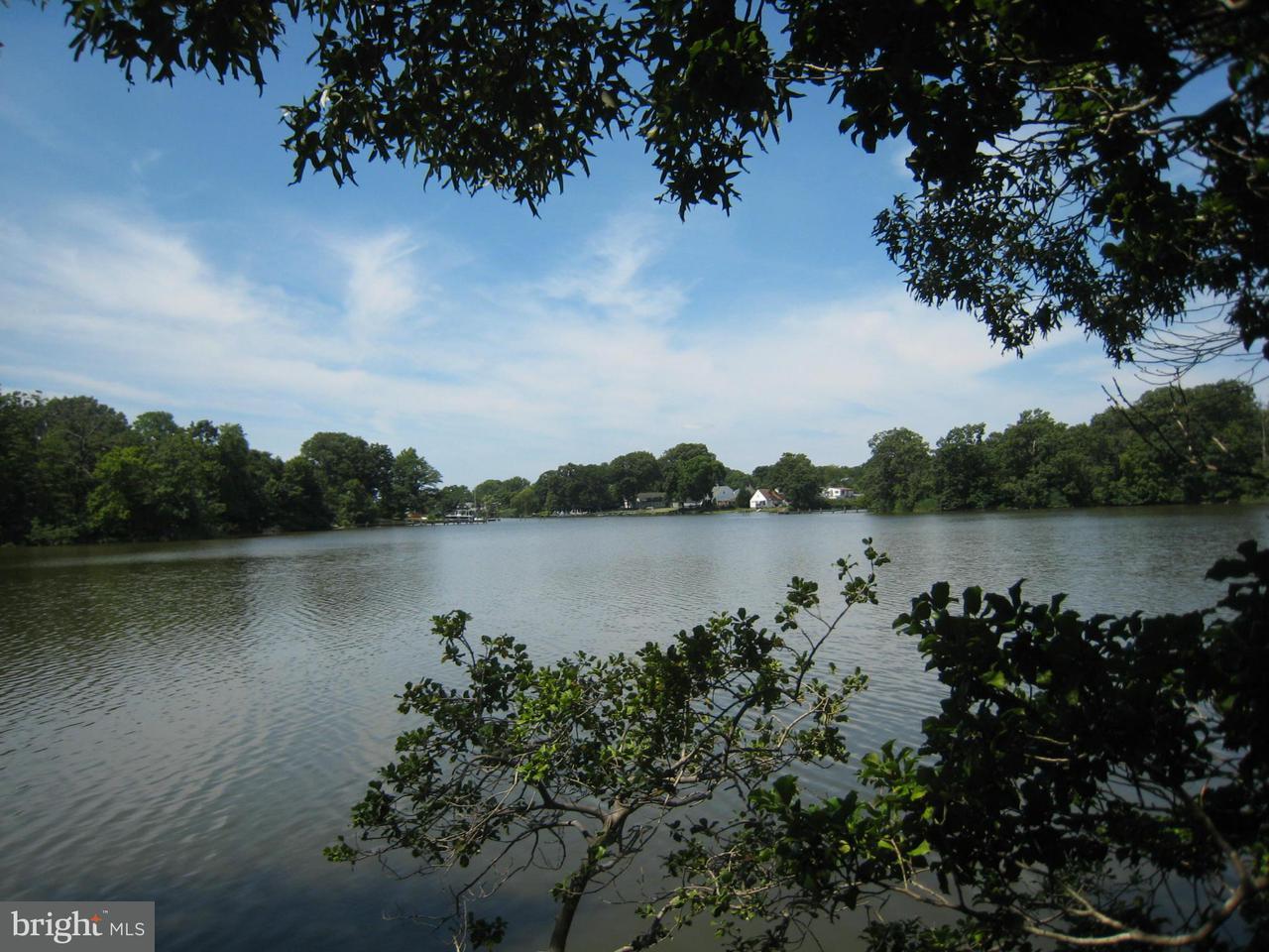 土地,用地 为 销售 在 River Road River Road Essex, 马里兰州 21221 美国