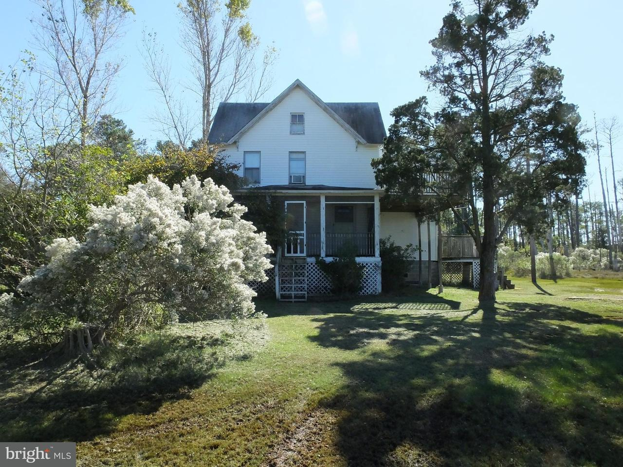 Single Family for Sale at 1860 Tedious Creek Rd Toddville, Maryland 21672 United States