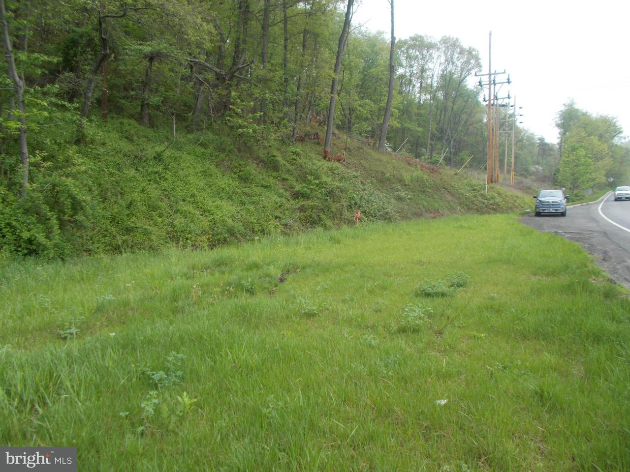 Land for Sale at Route 220 NW Cumberland, Maryland 21502 United States