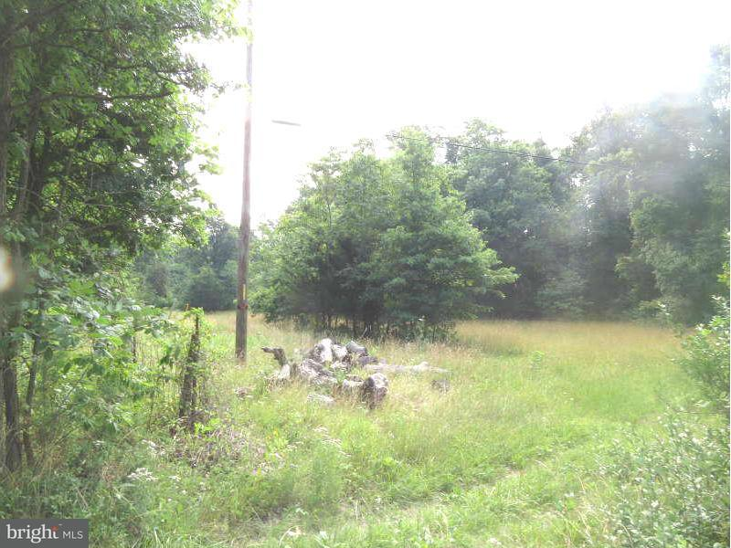 Additional photo for property listing at PEACH ORCHARD Lane PEACH ORCHARD Lane Aldie, Virginia 20105 Verenigde Staten