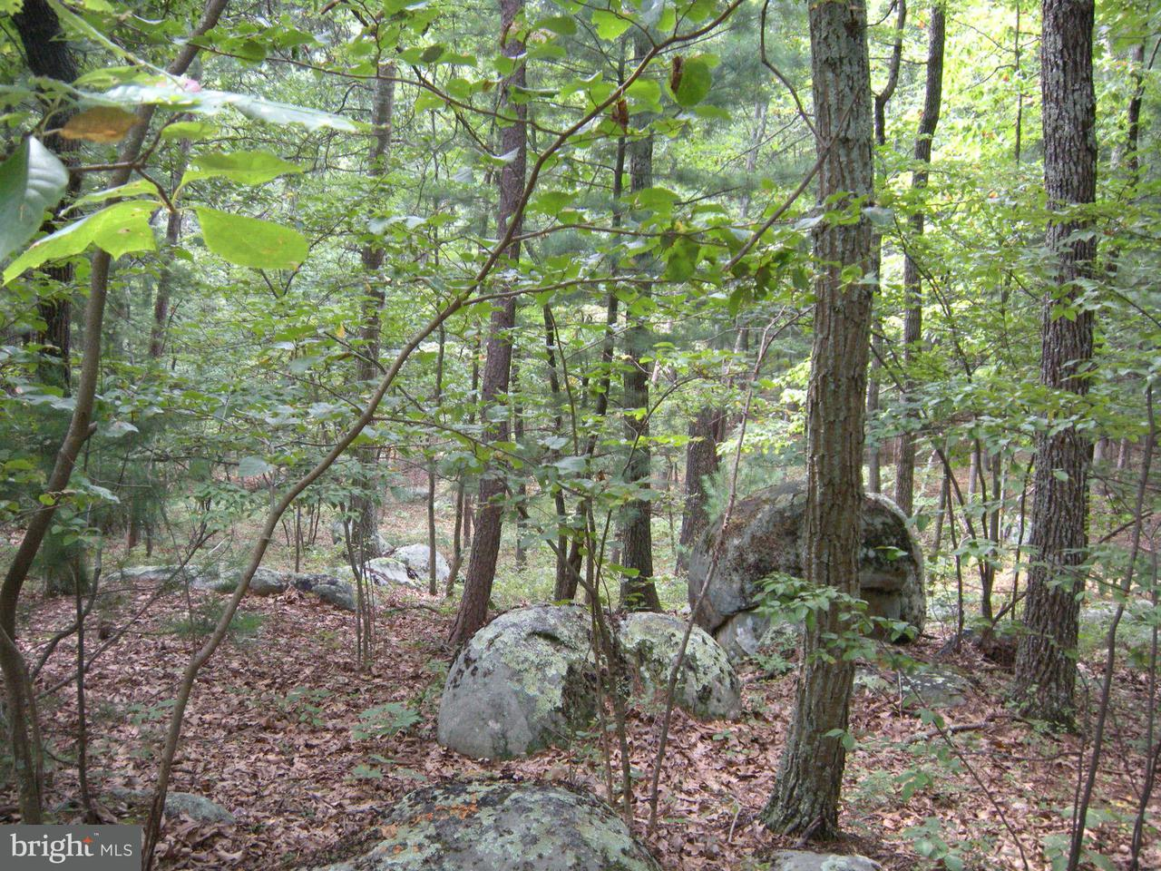 Land for Sale at 7lot # Mountain View Dr Capon Bridge, West Virginia 26711 United States