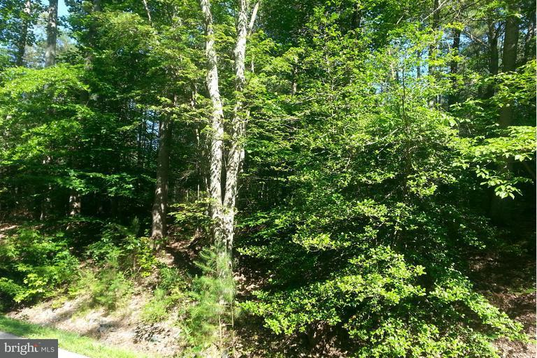 Additional photo for property listing at 6845 Bucktown Rd  Hughesville, Maryland 20637 United States