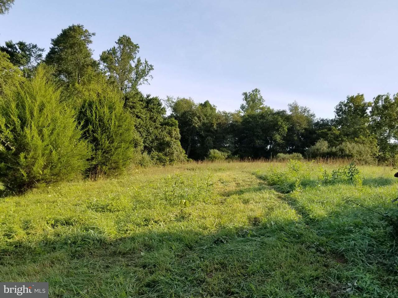 Additional photo for property listing at LEEDS MANOR Road LEEDS MANOR Road Marshall, Virginia 20115 Estados Unidos