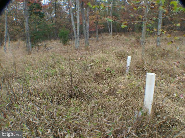 Land for Sale at Todd Coates Lot #14 Winchester, Virginia 22603 United States
