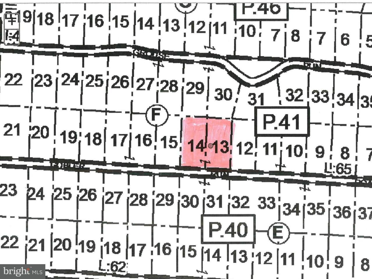 Land for Sale at Gobbler Run Rd. Oakland, Maryland 21550 United States