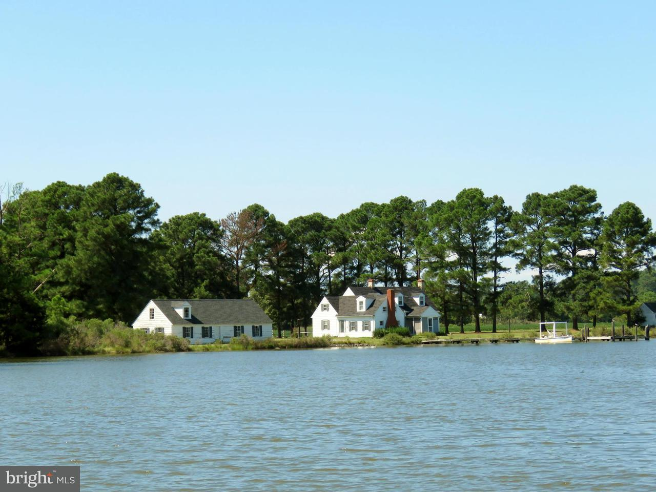 Additional photo for property listing at 5517 Ross Neck Road 5517 Ross Neck Road Cambridge, 메릴랜드 21613 미국