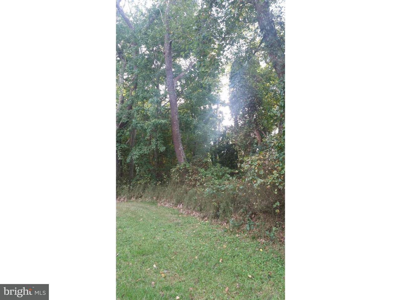 Maison unifamiliale pour l Vente à 77 IVINS Drive Plumsted, New Jersey 08533 États-Unis