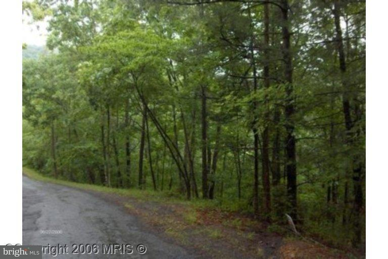 Land for Sale at Snead Ln Basye, Virginia 22810 United States