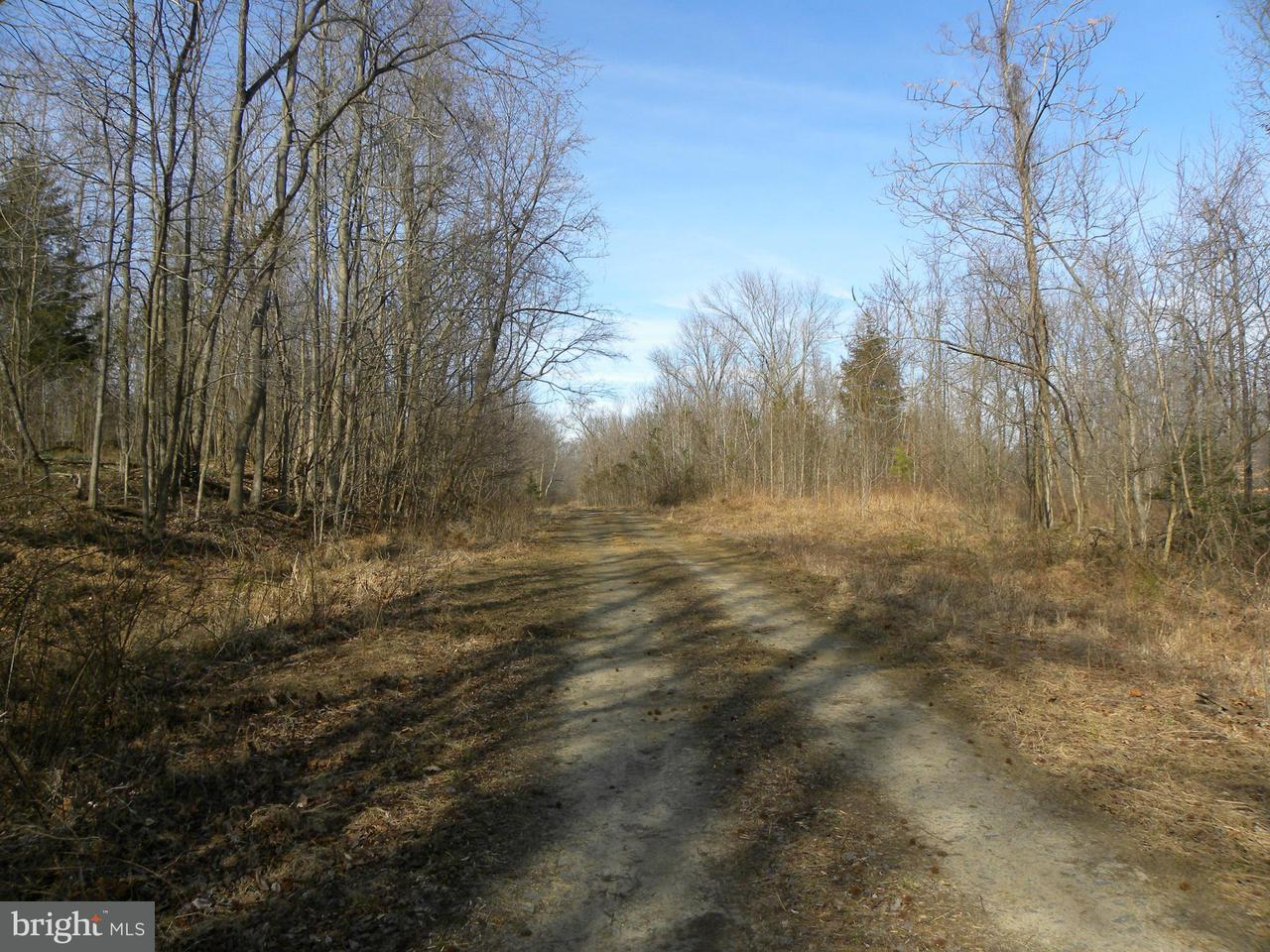 Land for Sale at NOT ON FILE NOT ON FILE King George, Virginia 22485 United States