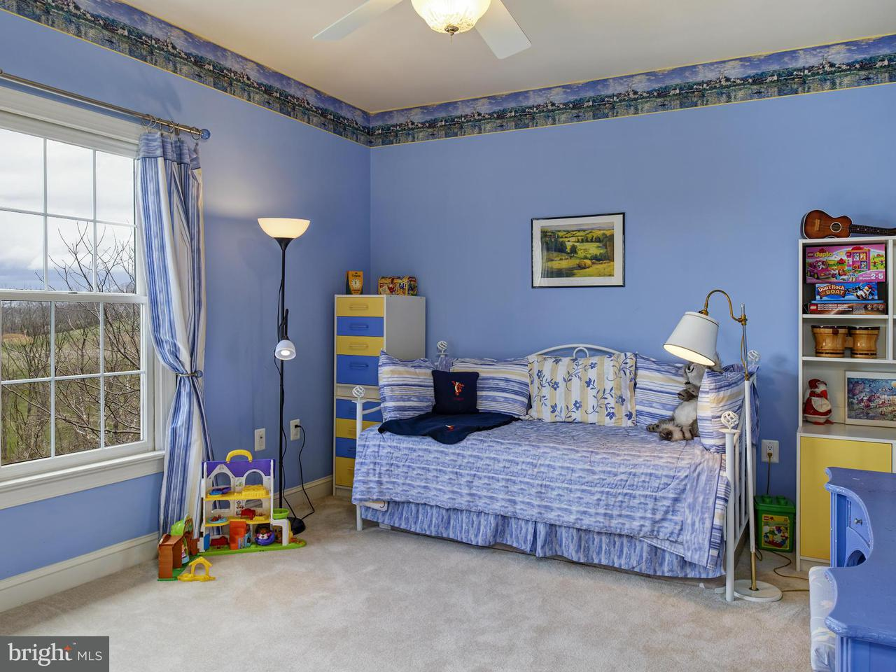 Additional photo for property listing at 16080 GOLD CUP Lane 16080 GOLD CUP Lane Paeonian Springs, Virginia 20129 États-Unis