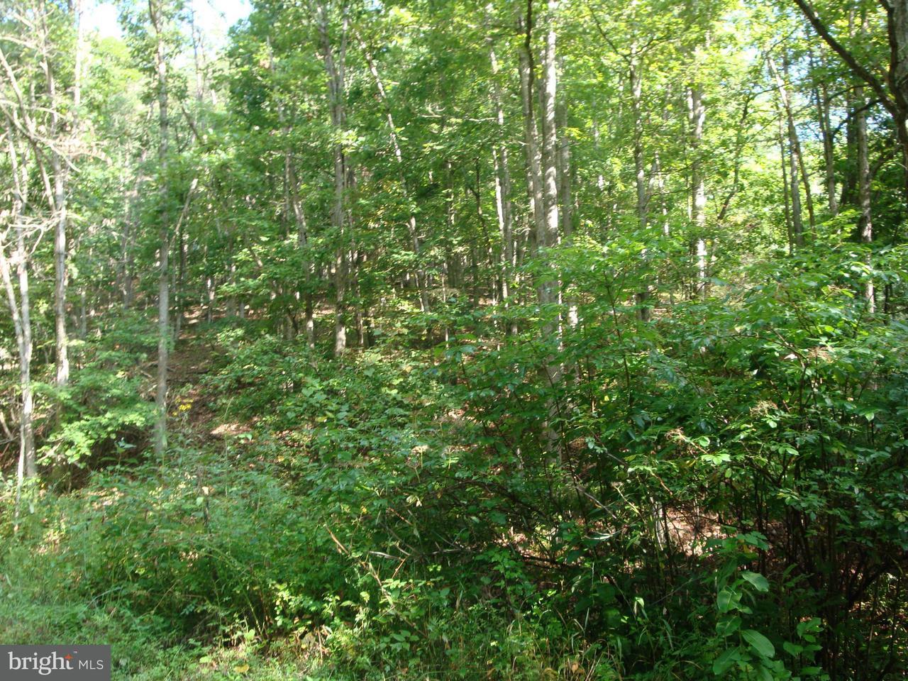 Land for Sale at Funkhouser Rd. Baker, West Virginia 26801 United States