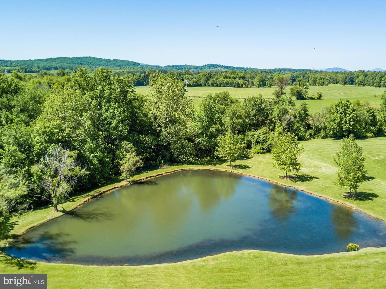 Additional photo for property listing at 2120 Burrland Ln  The Plains, Virginia 20198 United States