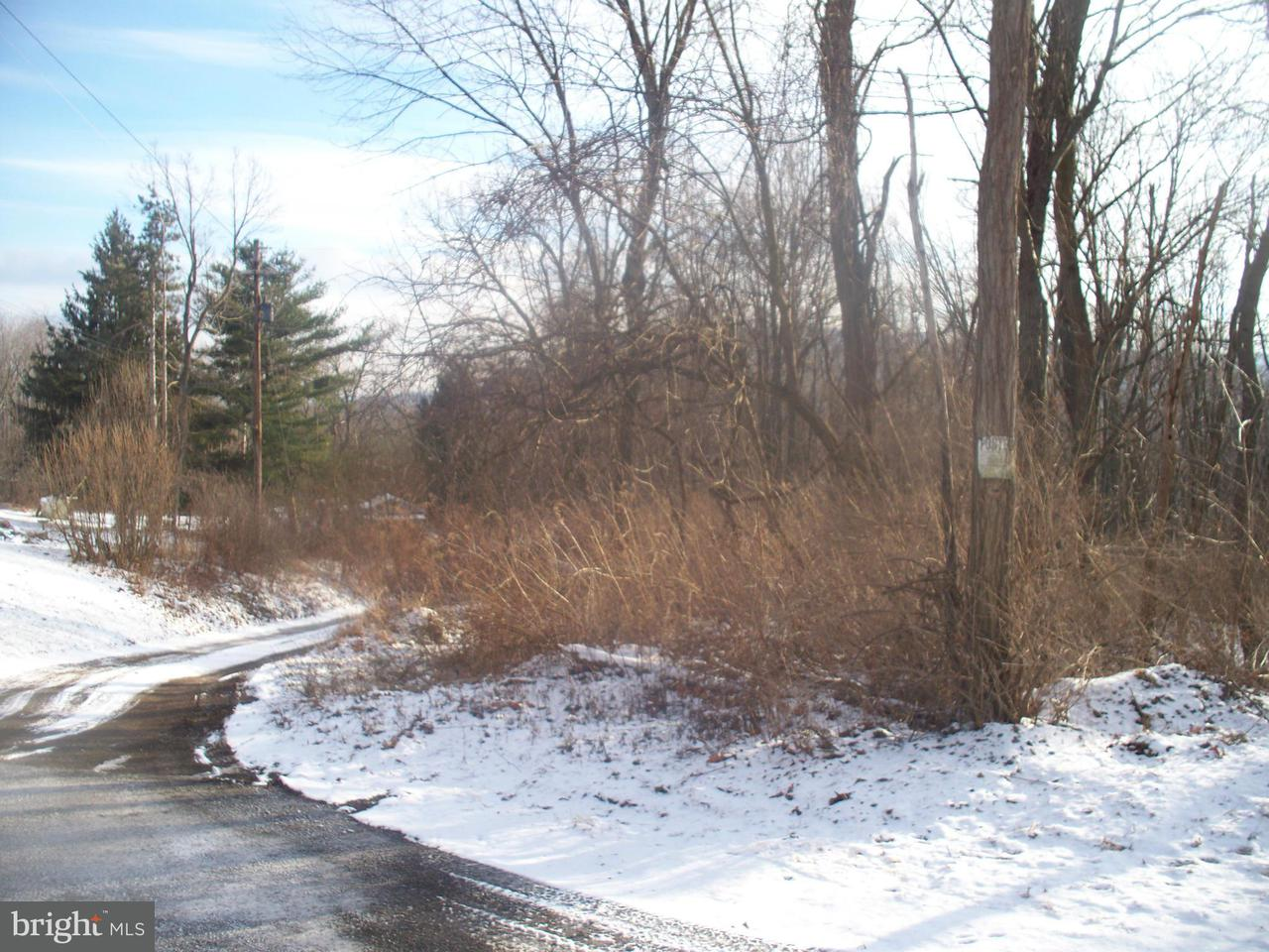 Land for Sale at Piney Mountain Rd Eckhart Mines, Maryland 21528 United States