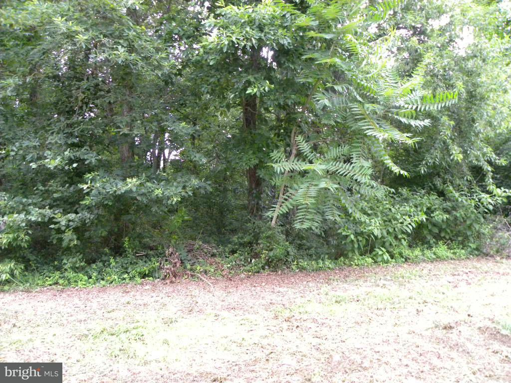 Land for Sale at Fourth St Crumpton, Maryland 21628 United States