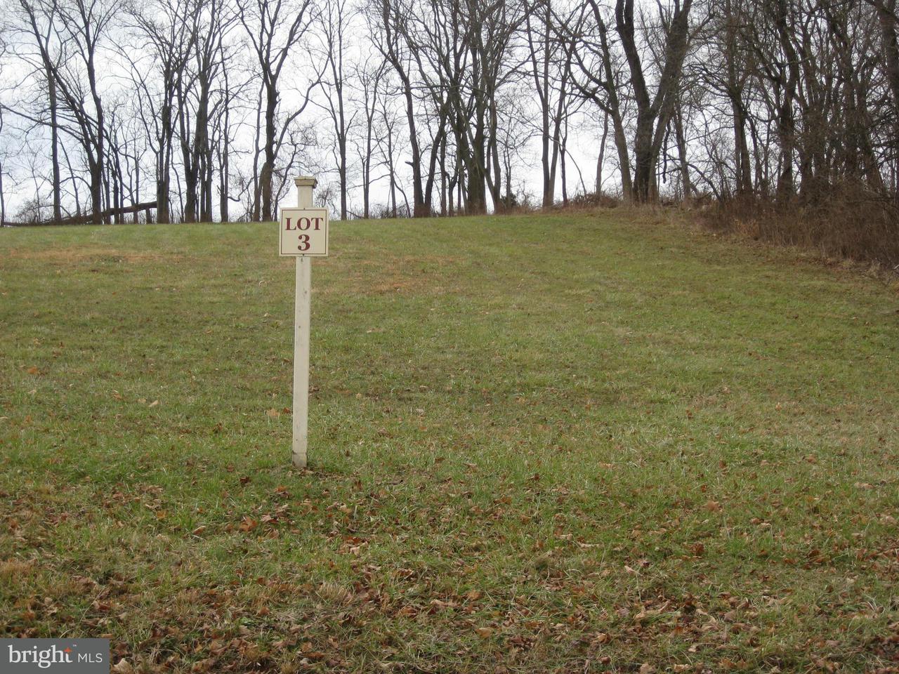 Land for Sale at 12183 Catoctin Farm Ln Lovettsville, Virginia 20180 United States