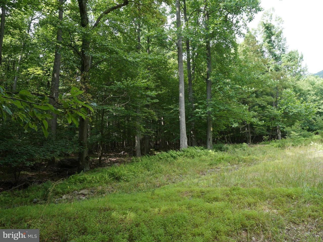 Additional photo for property listing at Parkside Dr  Berkeley Springs, West Virginia 25411 United States