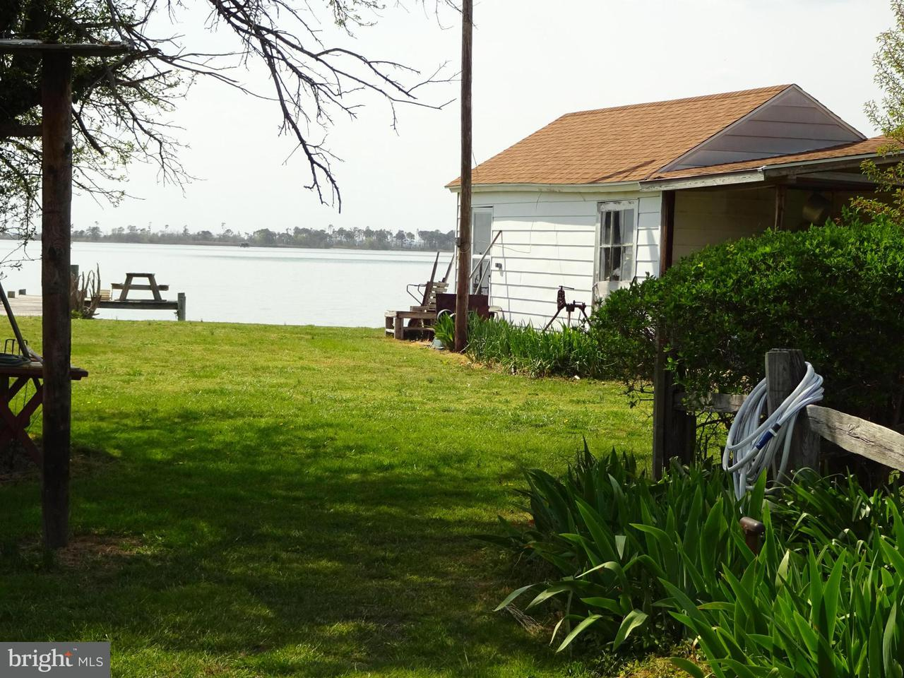 Additional photo for property listing at 2568 Hoopers Island Road 2568 Hoopers Island Road Fishing Creek, 馬里蘭州 21634 美國