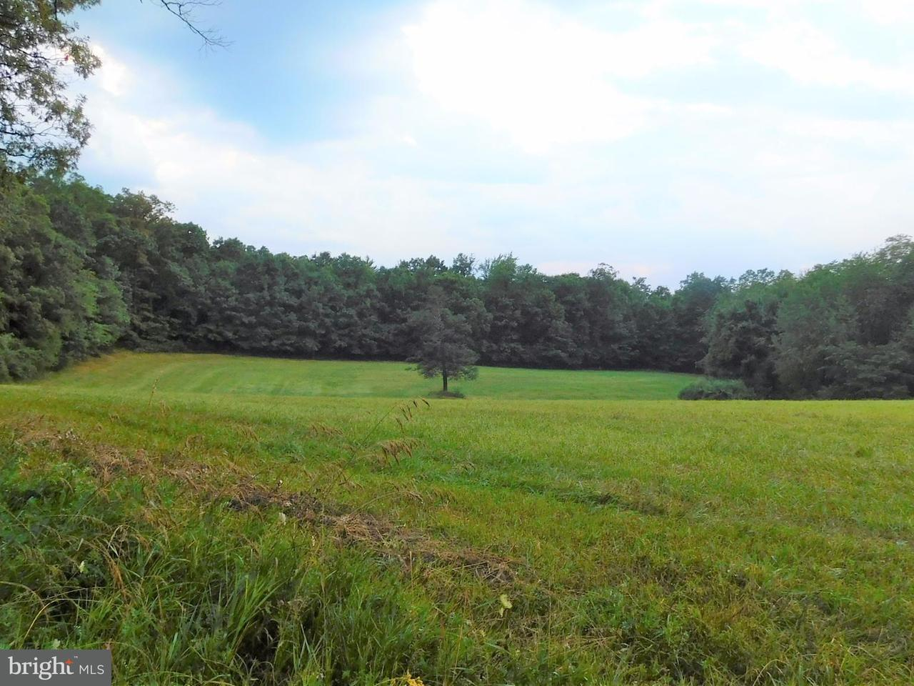 Land for Sale at Buck Valley Rd Warfordsburg, Pennsylvania 17267 United States