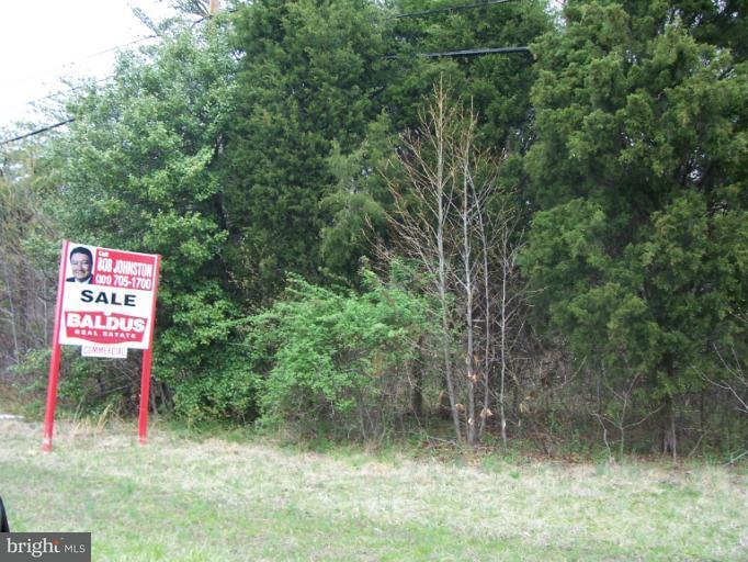 Land for Sale at 10100 Crain Hwy Faulkner, Maryland 20632 United States