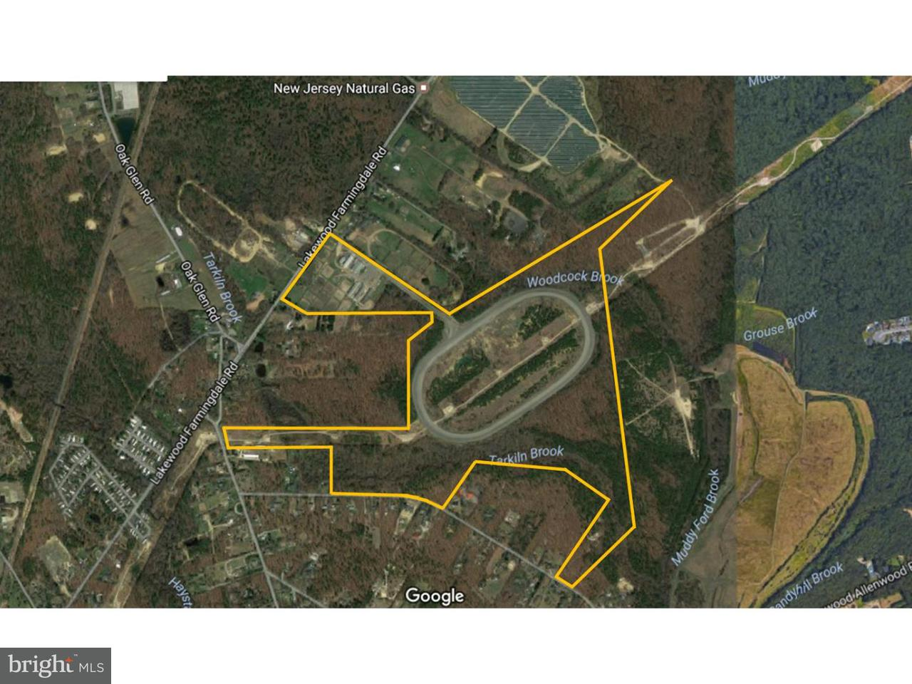 Farm for Sale at 935 LAKEWOOD FARMINGDALE Road Howell, New Jersey 07731 United States