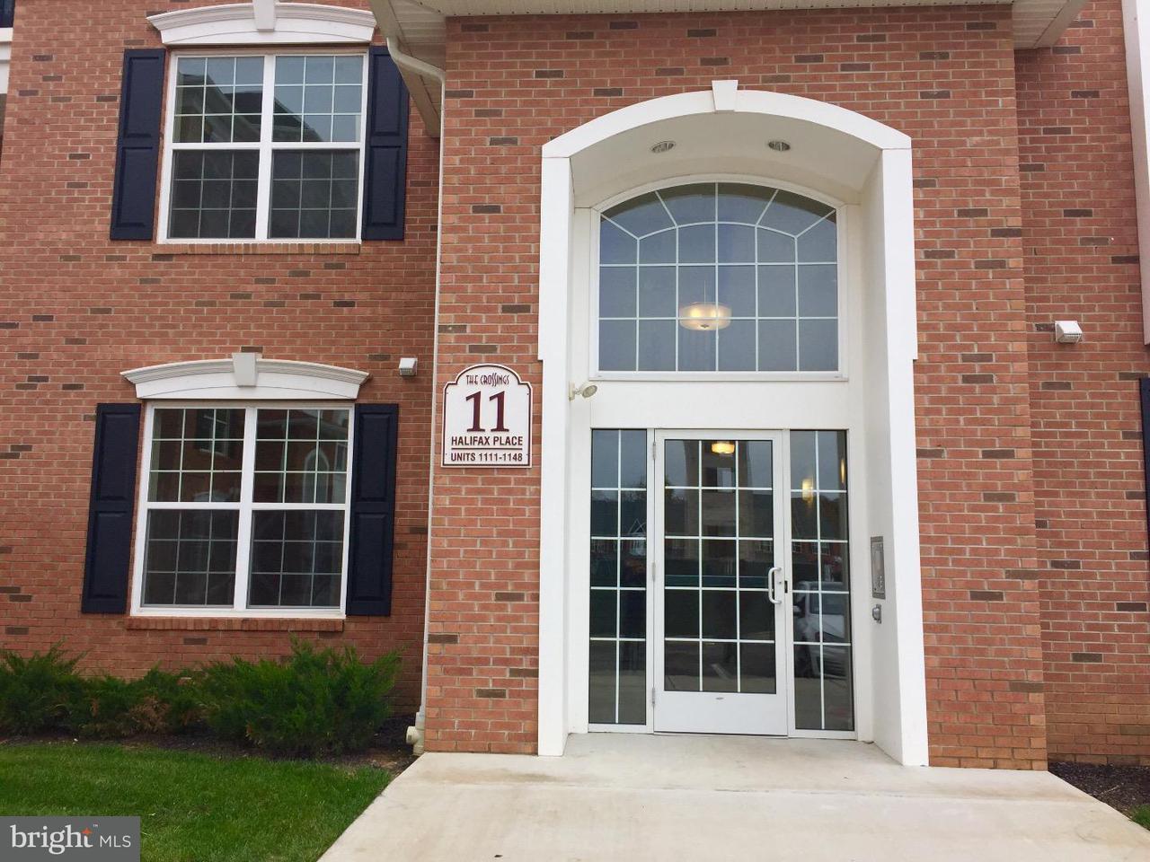 联栋屋 为 出租 在 1121 HALIFAX Place 汉密尔顿, 新泽西州 08619 美国在/周边: Hamilton Township