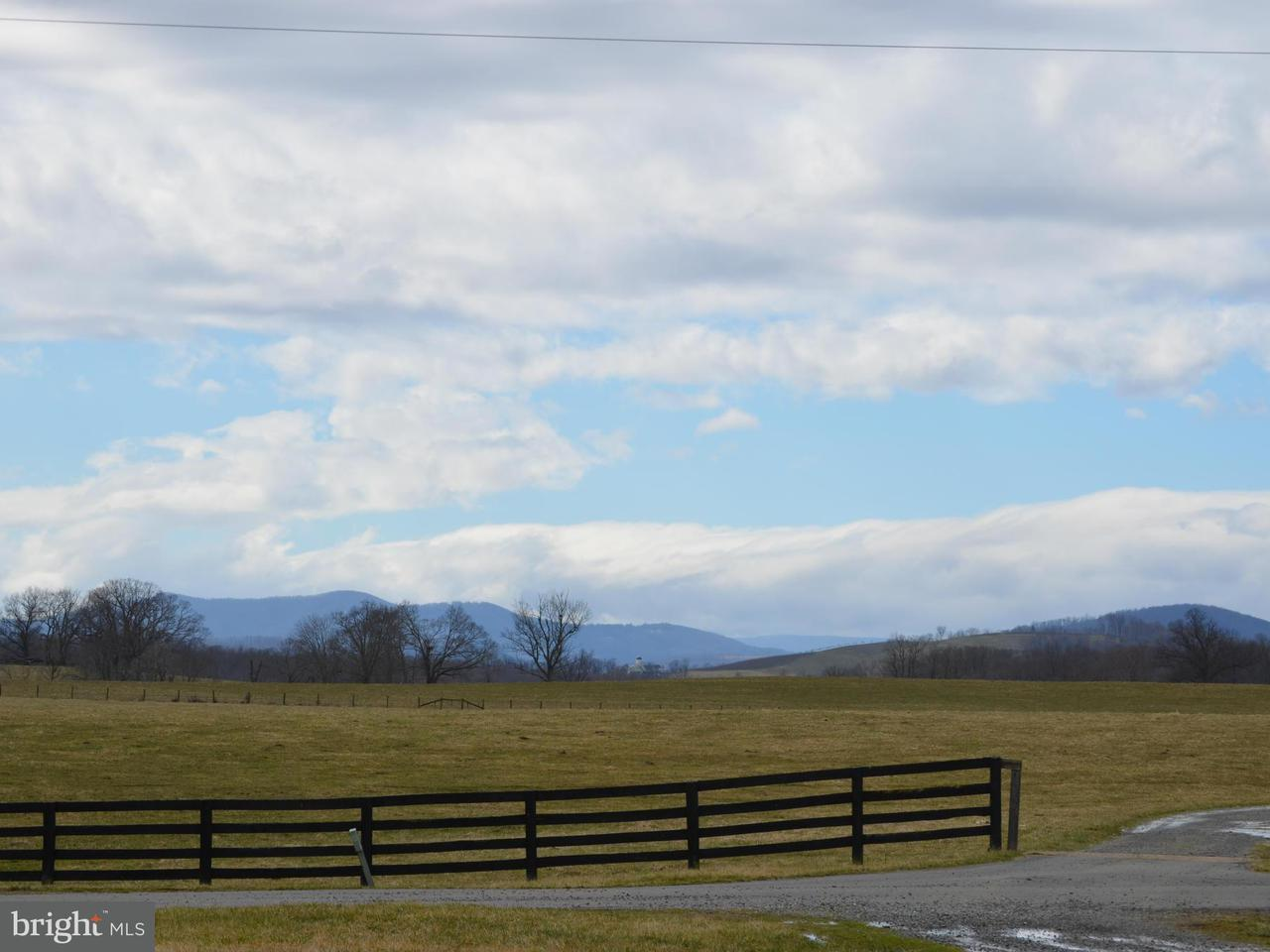 Additional photo for property listing at 9024 Quadrangle Road 9024 Quadrangle Road Upperville, Virginia 20184 United States