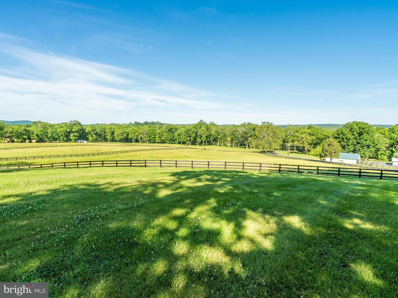 Commercial for Sale at TAMWORTH FARM LANE TAMWORTH FARM LANE Aldie, Virginia 20105 United States