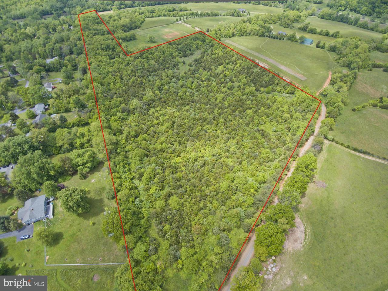 Land for Sale at 0 River Boat Dr Front Royal, Virginia 22630 United States