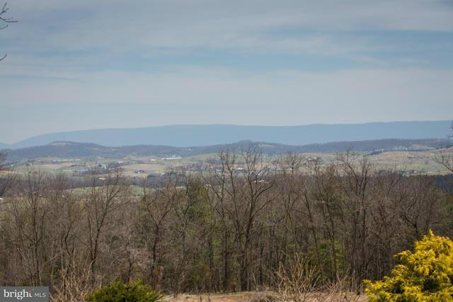 Land for Sale at 0 Williamsburg Rd Linville, Virginia 22834 United States