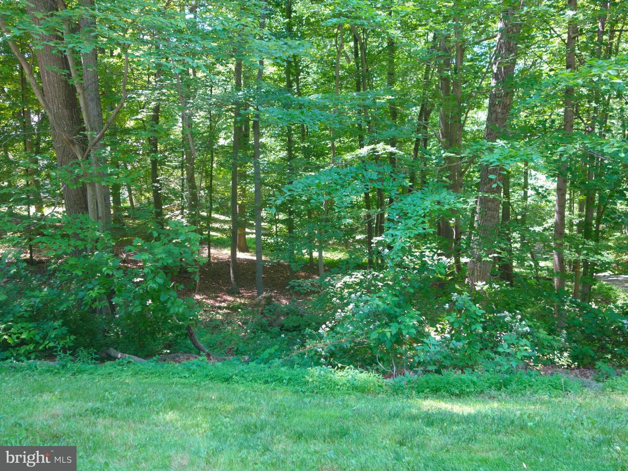 Additional photo for property listing at 11520 Luvie Ct  Potomac, Maryland 20854 United States